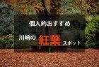 川崎のおすすめ紅葉情報