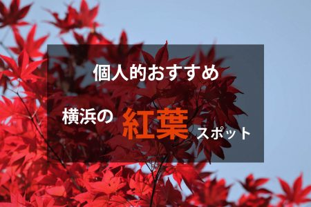 横浜のおすすめ紅葉情報