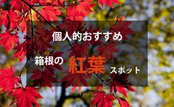 箱根の紅葉名所情報【個人的おすすめ】